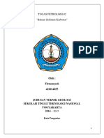 TUGAS_PETROLOGI.docx