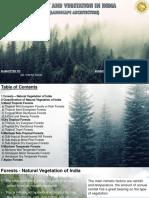 Forest.pptx