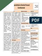 Especialidad en Der. Proc. Constitucional.pdf