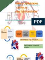 Volúmenes y capacidades cardíacas