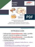 Esclerosis Múltiple y Otras Enfermedades Desmielinizantes