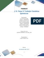 Formato de Entrga Trabajo Colavorativo- Unidad 3 Fase 5 Cambios Quimicos