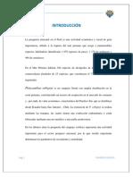 Jose Hilarion- Hidro.docx