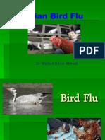 23568057-Bird-Flu