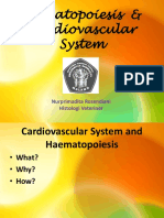 Histology of Haematopoietic and Cardiovascular System Sa