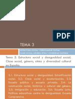 Tema 3 Estructura Social y Desigualdad Social.