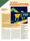 Brazilian Journal of Equine Medicine 31_pp_24_28.pdf