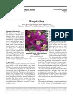 OF-38.pdf
