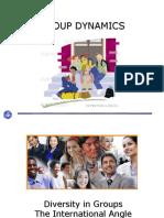 Diversity in Groups - International Context (1)