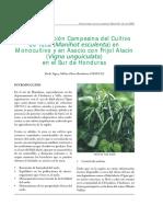 boletin14a.pdf