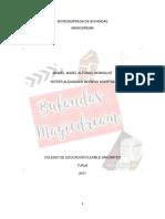 Proyecto Bufandas- Imprimir (2)