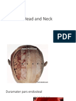 Head and Neck Overview SCALP Duramater and Vaskularisasi New