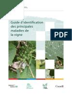 Guide d'Identifcation Des Principales Maladies de La Vigne