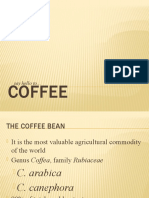 Brief Report on Coffee
