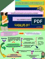 ESTEQUIOMETRIA DEL CRECIMIENTO MICROBIANO-BALANCES - SANDRA BAZAN.pdf
