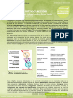 4. Cytokines - Introduction (Citocinas - Introducción)