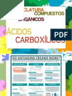p18-Nomenclatura de Compuestos Organicos-Acidos Carboxilicos