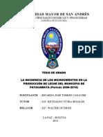Tesis o Impacto Da Microfinanciamento Na Cidade de Leite Patacamaya (Período 2006-2010)-1428