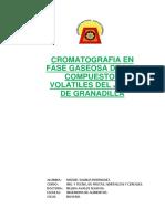 Cromatografia Del Jugo de Granadilla