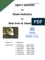 27866020 Project Report on TATA Steel