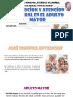 1. Promoción y Atención Integral en El Adulto Mayor