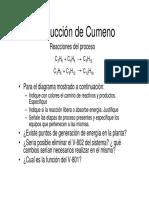 PS-2213 Producción de Cumero