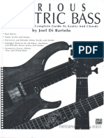 Serious Electric Bass -