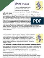 Cap 3 Proteinas PARTE 1.pptx