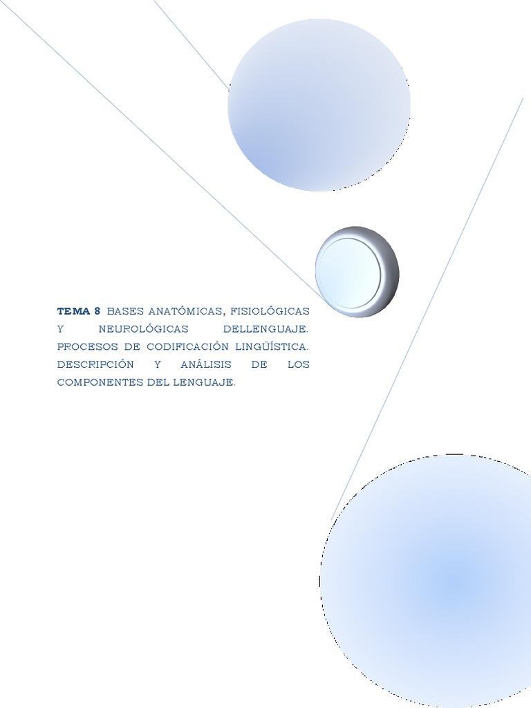 Tema 8 Audicion y Lenguaje Bases Anatómicas