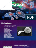 Toxoplasma Gondii Pp (1)