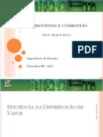 02 Ee2013 Distribuic3a7c3a3o de Vapor Ramon Silva