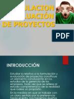 Form. de Proyectos