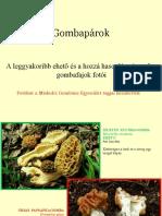 Gombaparok