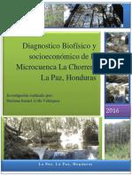 Diagnostico Biofísico y Socioeconómico de La Microcuenca La Chorrera La PazDai2.d