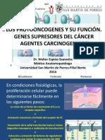 Clase 10 Agentes Carcinogenicos y Protooncogenes