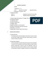 Informe de Anamnesis - Tecnicas II Uu