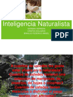 -Inteligencia-Naturalista-1