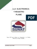 Planilla electronica, T- registro y Plame.pdf