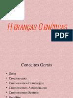 herancasgenticascromossomosconti-110321192148-phpapp02