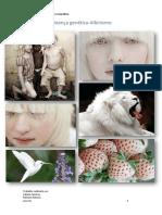 Albinism 1