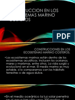 Diapositva Exposicion Ecosistema Marino Costero