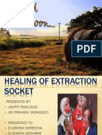Healing of Extraction Socket