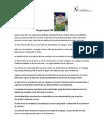Caso Grupo Lactos SAC.pdf