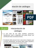 Interpretación-de-catálogos.pptx