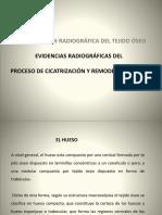 Radiología III