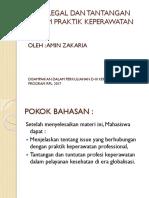 Issue Legal Dan Tantangan Dalam Praktik Keperawatan