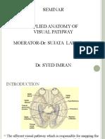 Final Optic Nerve1