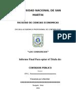 Informe Sobre Consorcio