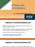 ETIOLOGIA DEL DAÑO CEREBRAL.pptx