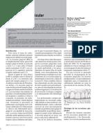 171-599-1-PB.pdf